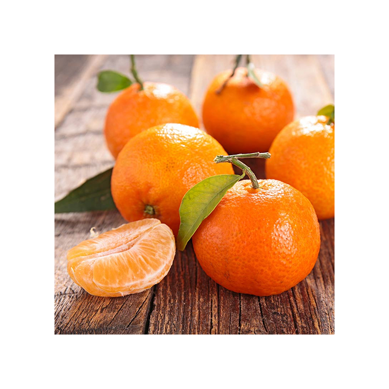 Mandarina Clementina
