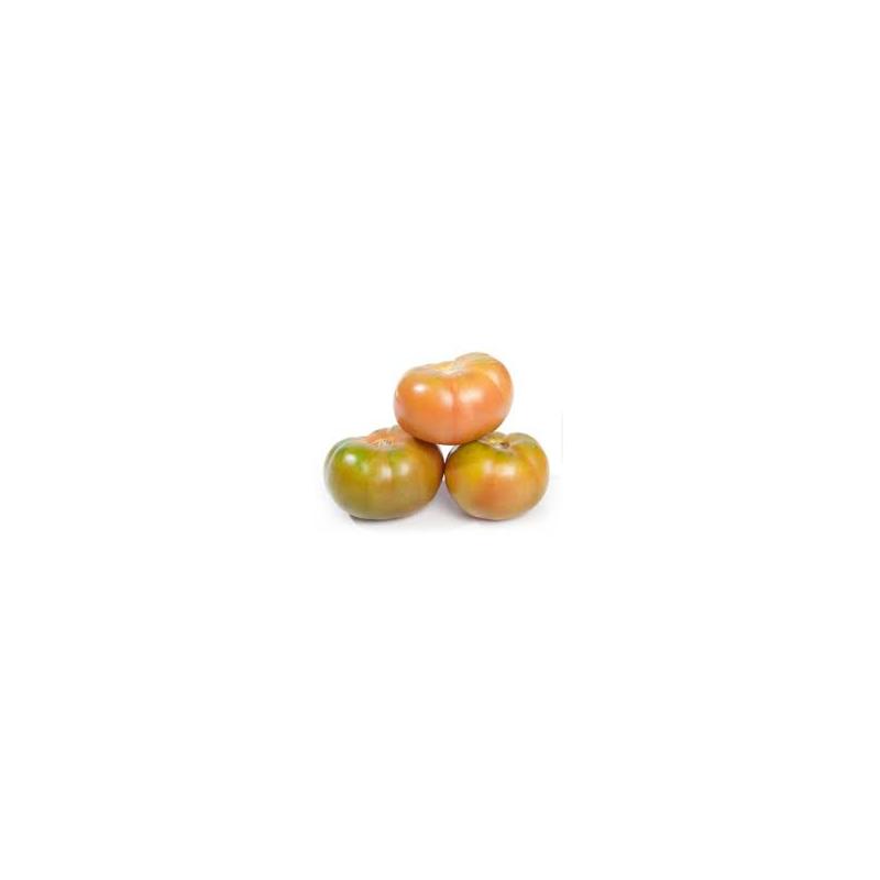 Tomàquet verd